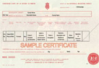 Sample Birth Certificate - Click for Full-Size Image